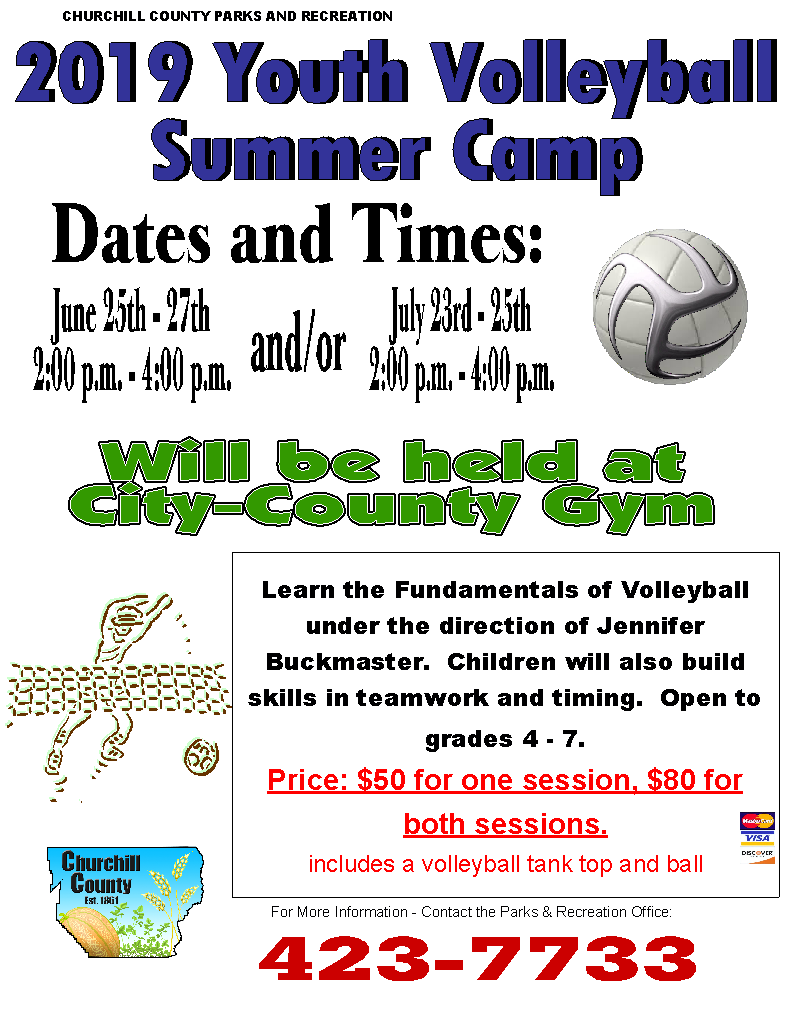Volleyball Camp (2019) - Flyer (Digital - Print)