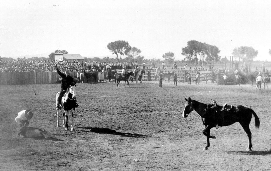 Black-and-white photo of calf roping at a rodeo.
