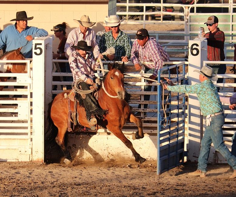 Man rides a bronc out of the gate at a rodeo